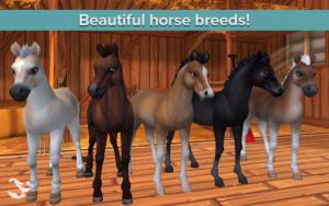 تصویر محیط Star Stable Horses v2.67