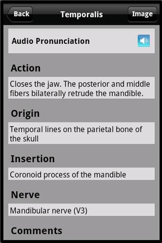 Learn Muscles: Anatomy v1.6.0 + data