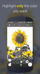 تصویر محیط Paletta – Smart color splash v2.1.3