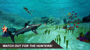 تصویر محیط Shark Simulator 2018 v3.0