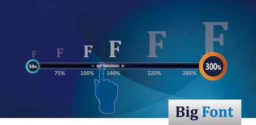 Big Font (change font size & display size) v3.19