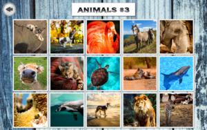 تصویر محیط IMAGEine Premium v2.0.4