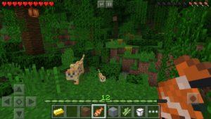 تصویر محیط Minecraft v1.14.1.3