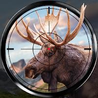 بازی شکار حیوانات با قابلیت نمایش نقاط حساس آیکون